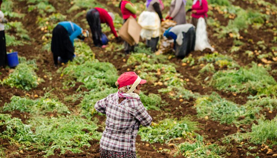 Mujer_trabajo_inmigracion