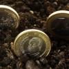 Bajos tipos de interés en la eurozona: impacto sobre los márgenes y la rentabilidad de los bancos